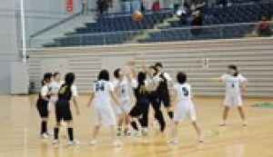 平成29年度 彩の国ふれあいピックバスケットボール大会 フレンドシップの部
