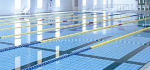 第29回 九州障がい者水泳選手権大会の画像