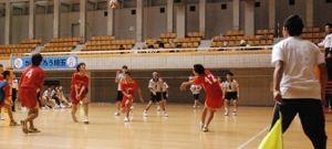 平成30年度 彩の国ふれあいピックバレーボール大会(知的障がいの部)
