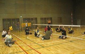 パラスポーツ体験教室(6月)~シッティングバレーボール~の画像