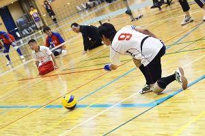 パラスポーツ体験教室(8月)~ローリングバレーボール~