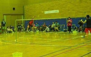 第2回日本知的障がい者バドミントン選手権大会の画像