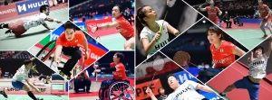 第6回 日本障がい者バドミントン選手権大会の画像